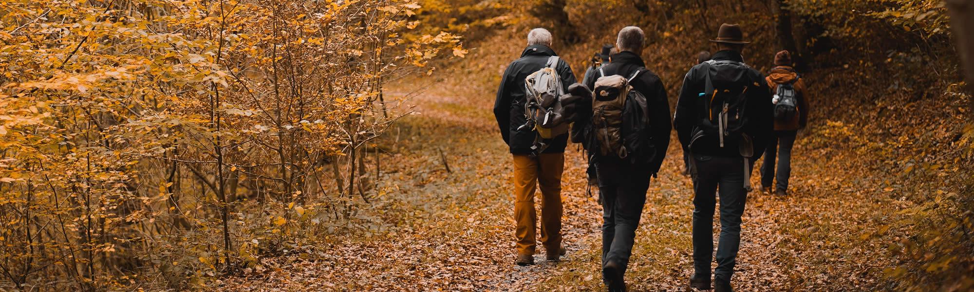 Gezond wandelen